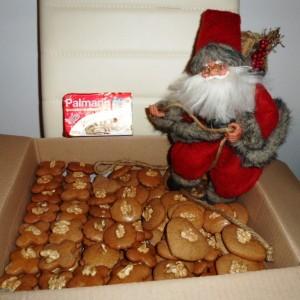 Mäkké vianočné medovníčky